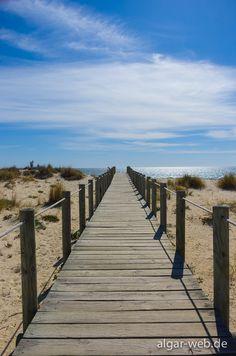 Algarve, Portugal: Way to the beach (Praia do Barril, Santa Luzia, Tavira)