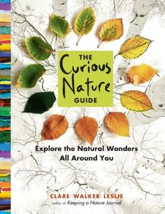 The Curious Nature Guide by Clare Walker Leslie. Not specifically written for adults to share nature with children, but perfect for the parent/teacher/caregiver who feels they don't know enough about nature. An excellent place to start. Beautifully illustrated with photos and sketches.