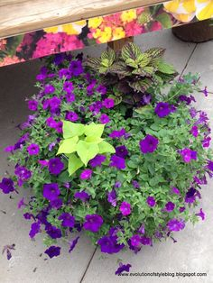 Evolution of Style: Nursery Scouting Love this lime green and purple combo