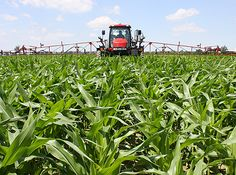 Finding precision ag paybacks for corn (ag news). Reading about this is when you confirm why you have to love technology