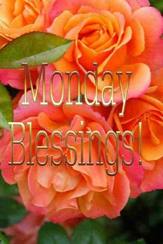 Monday Blessings Pictures, Photos, and Images for Facebook, Tumblr, Pinterest, and Twitter