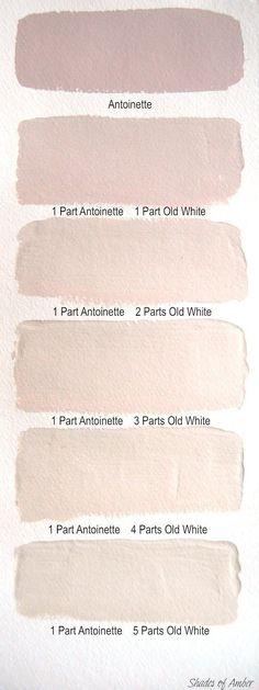Blush wall colors #paint #homedecor #interiordesign