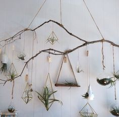 I just love this idea. For what? Im not sure. Maybe hanging mason jars with painting utensils and such in the cold room.