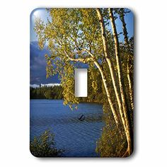 3dRose lsp_189837_1 Usa New York Paper Birch Along Fish Creek Pond At Sunset Light Switch Cover * You can find more details by visiting the image link.