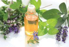 7 Loại dầu tốt nhất cho sức khỏe