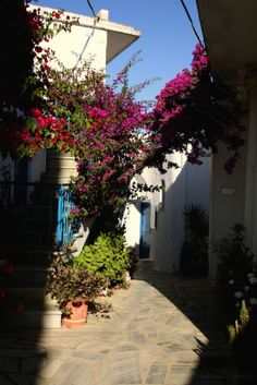 Little street, Kombos Village, Tinos Greece