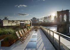Galeria de James Corner Field Operations projeta cobertura jardim no Brooklyn, Nova Iorque - 3