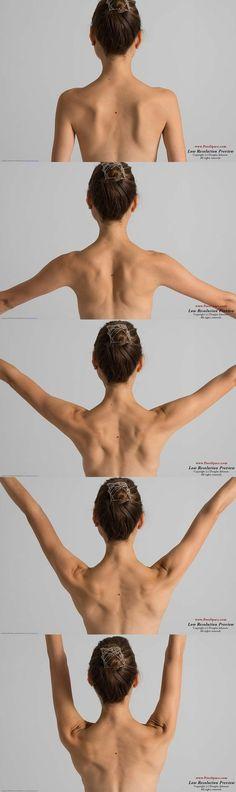 upper back of a woman