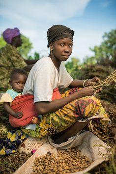 Mariam Kéita harvests peanuts on a farm in Siby, Mali | Jim Richardson, National Geographic