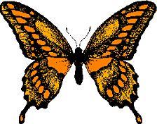 Gif Papillon