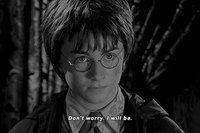 Гарри Поттер навсегда ϟ
