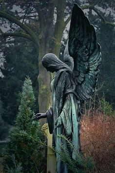 "sixpenceee: ""Angel of the Forest. This statue is can be found in Ozark, Missouri. (Source) "" sixpenceee: ""Angel of the Forest. This statue is can be found in Ozark, Missouri. Cemetery Angels, Cemetery Statues, Cemetery Art, Weeping Angels, Angels Among Us, Angels And Demons, Angeles, Old Cemeteries, Graveyards"