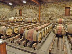 Barrels @ Spottwoode Winery, St. Helena, Napa Valley, Ca.