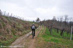 Itinerari MTB, Rive Rosse, itinerario tra i vigneti http://www.viaggiaescopri.it/itinerari-mtb-brusnengo-rive-rosse/