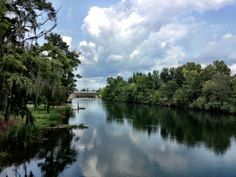 Rent bikes and explore riding trails or rent kayaks and paddle along the Canal in Augusta, Ga!
