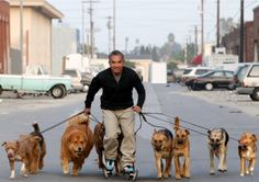 The Dog Whisperer:  Cesar Millan.  My hero.