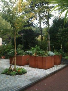 Raised Vegetable Garden Beds Can Be A Great Gardening Option – Handy Garden Wizard Contemporary Planters, Raised Garden, Modern Garden, Garden Planters, Garden Design, Garden Landscaping, Cottage Garden, Garden, Garden Pots