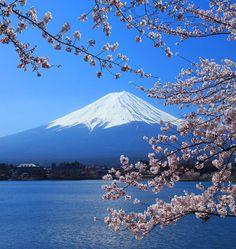 Beautiful cherry blossoms with Mount Fuji, Shizuoka, Japan. Barbara's pen pal lived within sight of this mountain. Beautiful Islands, Beautiful World, Beautiful Places, Beautiful Pictures, Nature Pictures, Travel Pictures, Japan Tourist Spots, Cherry Blossom Japan, Cherry Blossoms