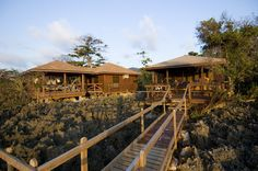 The Anthony's Key Resort offers the perfect destination for dive trips and relaxing getaways alike!
