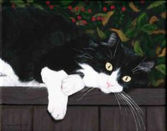 tuxedo cats in paintings | Paintings by Constance Shields - All Sold