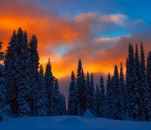 Inspiring picture perfect, photography, winter, trees, beauty, sunset, cold, cool, nature, sky, snow. Resolution: 900x614. Find the picture to your taste!