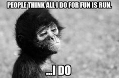 People think all I do for fun is run. I do. - Funny Monkeys - Funny Monkeys meme - - The post People think all I do for fun is run. I do. appeared first on Gag Dad. Running Memes, Gym Memes, Running Quotes, Running Motivation, Running Workouts, Mzansi Memes, Body Workouts, Animal Memes, Funny Animals