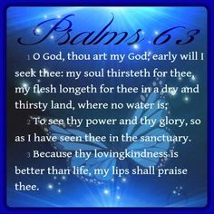 Psalm 63:1-3 (KJV)   O God, thou art my God; early will I seek thee: my soul thirsteth for thee, my flesh longeth for thee in a dry and thirsty land, where no water is;  2 To see thy power and thy glory, so as I have seen thee in the sanctuary.  3 Because thy lovingkindness is better than life, my lips shall praise thee.