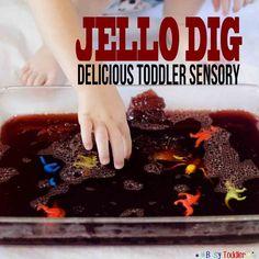 Jello Dig: a delicious toddler sensory activity