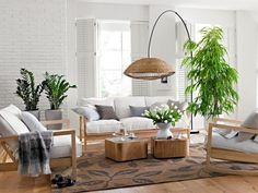 feng-shui-facile-salon-meubles-bois-centre-pièce-plantes