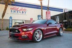 Shebly Super Snake é versão anabolizada do Mustang GT criado pela Shelby American. Modelo eleva a potência original de 435 cv para 650 cv ou 750 cv. O câmbio pode ser manual ou automático de seis marchas.