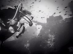 Good morning all! Holly, currently volunteering on our marine program, took this dramatic shot on her wreck dive last week! Diving School, Diving Course, Good Morning All, Padi Diving, Image