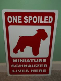 We have two spoiled Miniature Schnauzers at our house! One Spoiled Miniature Schnauzer Lives Here Aluminum by 4pawsdecals