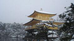 雪の金閣寺 Snow scence of Kinkaku-ji (Feb 14, 2014)