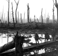 Five Australian gunners on duckboards crossing Chateau Wood during Third Ypres