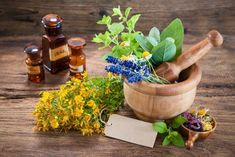 Diet diary: The immense power of medicinal plants Harvard Health, Weight Loss Herbs, Cancer Cure, Medicinal Plants, Herbal Medicine, Herbal Remedies, How To Stay Healthy, Natural Health, Health And Wellness