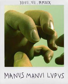 Manus Manui Lupus. Ein Wolf ist der Mensch dem Menschen. Homo homini lupus. Man is wolf to man. #sprichwort #proverb Homo, Left Handed, Dinosaur Stuffed Animal, People