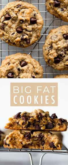 Big fat peanut butter oatmeal chocolate chip cookies are easy to make and will be the thickest cookies you bake at home! Recipe on sallysbakingaddic… Peanut Butter Chip Cookies, Oatmeal Chocolate Chip Cookies, Chocolate Chips, Steel Cut Oatmeal Cookies, Easy Oatmeal Cookies, Chocolate Peanut Butter Cupcakes, Chocolate Chocolate, Healthy Chocolate, Chocolate Recipes