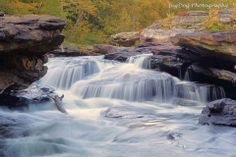 1000 images about wild amp wonderful west virginia on pinterest west
