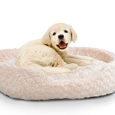 Paw Plush Round Pet Bed with Removable Cushion Large * Visit the image link more details.-It is an affiliate link to Amazon. #DogBedsFurniture