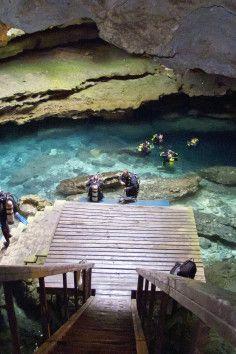 Devil's Den Resort & Springs is Florida's pre-historic underground spring in Williston, Florida.