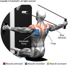 SHOULDERS - CROSSOVER HIGH SEATED CABLE MACHINE