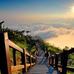 Stairway to Heaven Yushan National Park Taiwan #iPad #Wallpaper HD