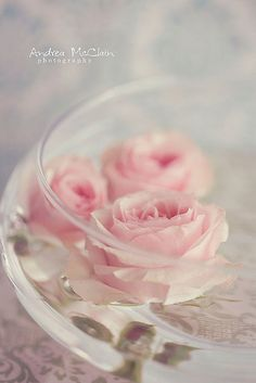 Floating Rose - I have these clear glass bowls