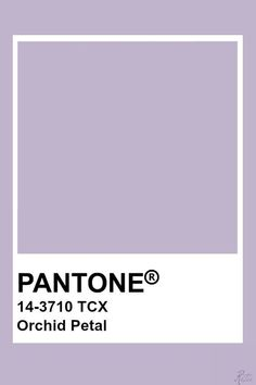 Pantone Colour Palettes, Paint Color Palettes, Colour Pallete, Pantone Color, Colour Schemes, Color Patterns, Pantone Swatches, Color Swatches, Paleta Pantone