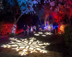 ZooLights 2016, evening event at SF Zoo annually in the 2nd half of December