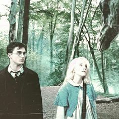 Harry Potter and the order of phoenix.
