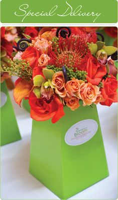 love this tall long lime green box vase idea with complimenting orange, coral pin cushion flower and min green  berries