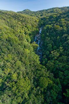 Mossman Gorge, Daintree National Park