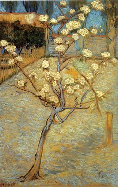 Pear Tree in Blossom - Vincent van Gogh