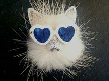 眼鏡猫のブローチ No.4